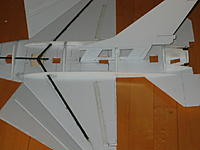 Name: IMG_2437.JPG