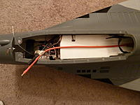 Name: P1000504[1].jpg