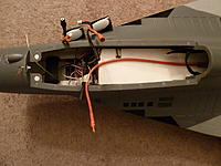 Name: P1000506[1].jpg