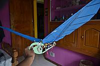 Name: DSC_4606.jpg