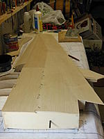 Name: Wing - R01.jpg