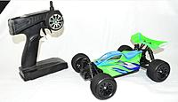 Name: 18 Scale Brushed Buggy.jpg