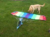 Name: 2nd paraplane.jpg