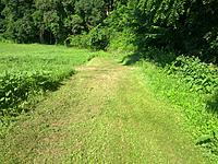 Name: IMG_20140709_092130.jpg