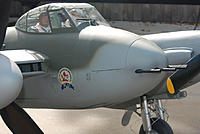 Name: Mosquito 11032011_07.jpg