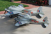 Name: Mosquito 11032011_09.jpg