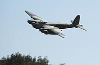 Name: Mosquito 20120407_12.jpg