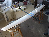 Name: P1020017.jpg