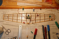 Name: IMG_9386_DxO.jpg