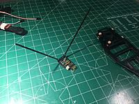 Name: IMG_6492.JPG