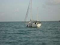 Name: DSC00330.jpg