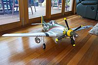 Name: P51 Gunfighter 4.jpg