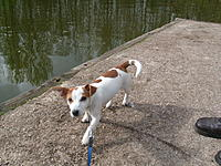 Name: S7300038.jpg