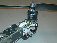 Name: Tri_tail.jpg