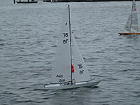 Name: Oz_Day_Regatta.jpg