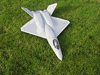 Name: yf-23_grass3_2013-11_16.jpg