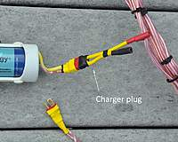 Name: charger-pugDSC_0527.jpg
