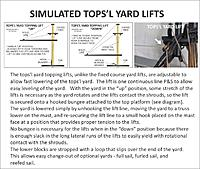 Name: TOPS'L YARD LIFTS.jpg