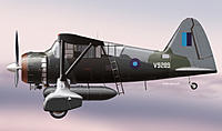 Name: Lysander.jpg