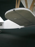 Name: P1081323w.jpg