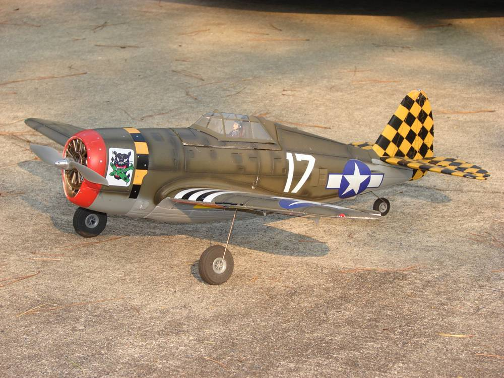 EFlite P-47 with invasion stripes on the wings and EFlite 480 outrunner.... unlimited vertical from hand launch!!