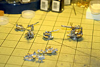 Name: IMG_5914 13 x 8.6 LR.jpg