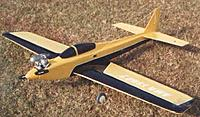Name: Bridi Kaos modified to tail dragger and Wing mfg canopy.jpg Views: 3 Size: 26.9 KB Description: My first pattern type plane