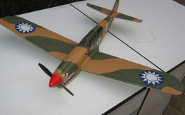 Cox P-40 Warhawk