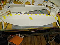 Name: fuse and wing.jpg