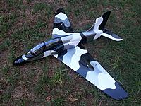 Name: Hawk-Tx_build_035.jpg