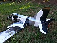 Name: Hawk-Tx_build_041.jpg