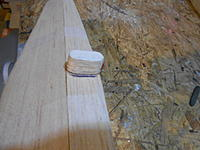Name: DSCN0664.jpg