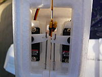 Name: P1010633.jpg