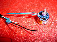 Name: DSC04582.JPG