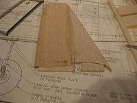 Name: IMG_1917.jpg