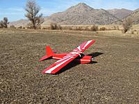Name: IMG_0279 (Large).jpg