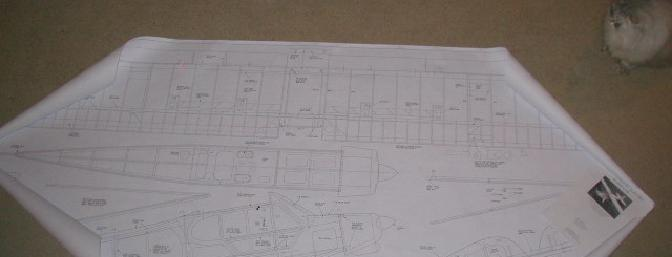 The plans are very complete and very large with the wing drawn full span for easy building.