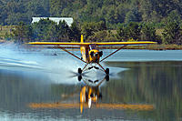 Name: 1031227572_JM6MK-M.jpg
