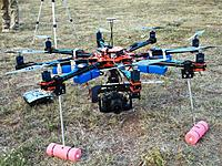 Name: BergenSale.jpg