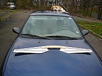 Name: unswept.jpg Views: 180 Size: 293.7 KB Description: Wings attached to spar -- unswept.  My ferocious cat stands guard.