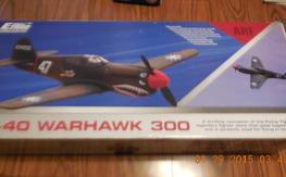 E-flite P40 warhawk 300