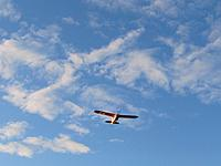 Name: Super Cub 5.17.13 002.jpg