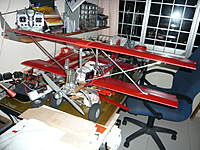 Name: P1040981.jpg