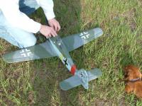 Name: PZFW190 01.jpg