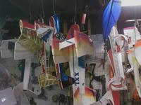 Name: 0219091937a_01.jpg