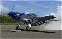 Name: p51dmustang8.jpg