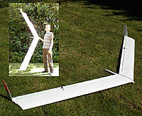 Name: wing 100.jpg