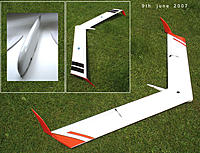 Name: wing 58.jpg