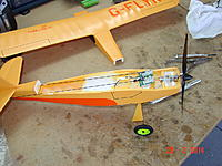 Name: Champ open.jpg