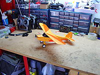 Name: PZ Champ.jpg